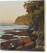Salt Creek Shore Line Wood Print