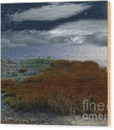Salt Marsh At The Edge Of The Sea Wood Print by RC DeWinter