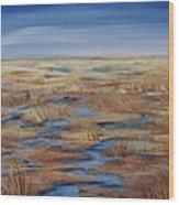 Salt Marsh In Summer Wood Print
