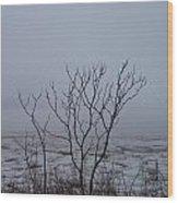 Salt Marsh Submerged In Fog Wood Print