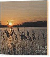 Salt Marsh Sunset Wood Print