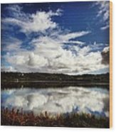 Salt Pond Mirror  Wood Print