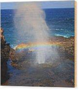 Salt Spray Rainbow Wood Print