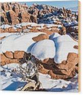 Salt Valley Overlook Wood Print