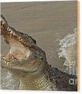 Salt Water Crocodile 2 Wood Print
