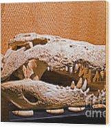 Salt Water Crocodile Skull Wood Print