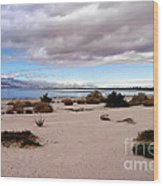Salton Sea California Wood Print