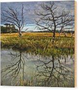 Salty Marsh At Jekyll Island Wood Print