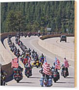 Salute To Veterans Rally Wood Print
