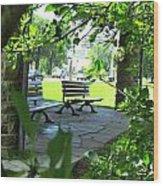 Sam Lawrence Park Hamilton 2 Wood Print