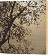 Saman In The Sky Wood Print