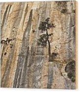 Samaria Gorge National Park, Greece Wood Print