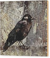 Same Crow Different Day Wood Print