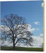 Same Tree Many Skies 11 Wood Print