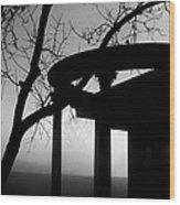 Samhain Series 2 Fairbanks Park Terre Haute Indiana Wood Print