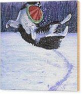 Sammy's Frisbee Jump Wood Print