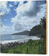 Samoan Coastline Wood Print