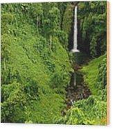 Samoan Waterfall Wood Print