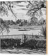 Sampit River View Wood Print by John Rizzuto