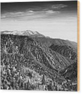 San Bernardino Snow Wood Print