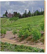 San Casciano In Val Di Pesa- Italy Wood Print