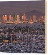 San Diego Skyline Wood Print by Alexis Birkill