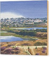 San Elijo And Manchester Ave Wood Print by Mary Helmreich