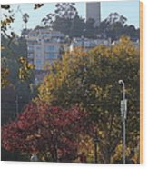 San Francisco Coit Tower At Levis Plaza 5d26216 Wood Print by Wingsdomain Art and Photography
