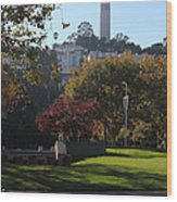 San Francisco Coit Tower At Levis Plaza 5d26217 Wood Print by Wingsdomain Art and Photography