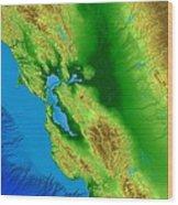 San Francisco Map Art Wood Print