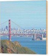 San Fransisco Wood Print