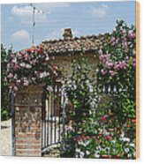 San Gimignano Beauty Of Tuscany  Wood Print