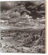 San Gimignano View Wood Print