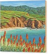 San Mateo Springtime Wood Print