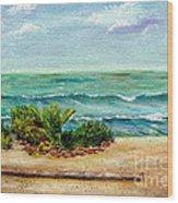 San Onofre Beach Wood Print