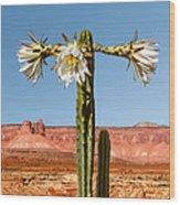 San Pedro Cactus Wood Print