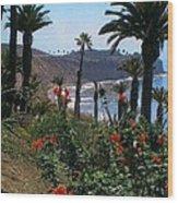 San Pedro Coast Line Wood Print by Robert Bray