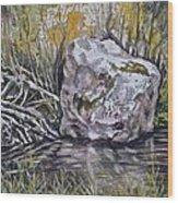 San Poil River Rock Wood Print