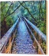 San Simeon Foot Bridge Wood Print