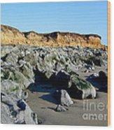 San Simeon Rocky Beach Wood Print