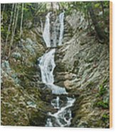 Waterfall - Sanctuary At Savoy Mountain Wood Print