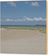 Sand And Ocean Of Assateague Island National Seashore Wood Print