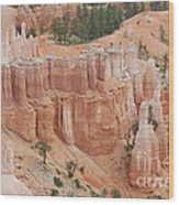 Sand Castles In Bryce Canyon Wood Print by Mari  Gates