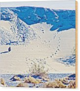 Sand Dune Bordering Salt Creek Trail In Death Valley National Park-california Wood Print