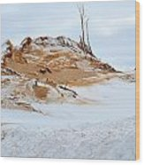 Sand Dune In Winter Wood Print
