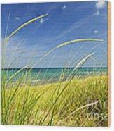 Sand Dunes At Beach Wood Print