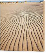 Sand Dunes At Eucla Wood Print