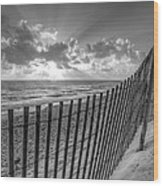 Sand Dunes In Black And White Wood Print