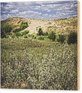 Sand Dunes In Manitoba Wood Print