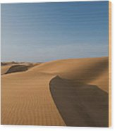 Sand Dunes In The Namib Desert In Namibia Wood Print